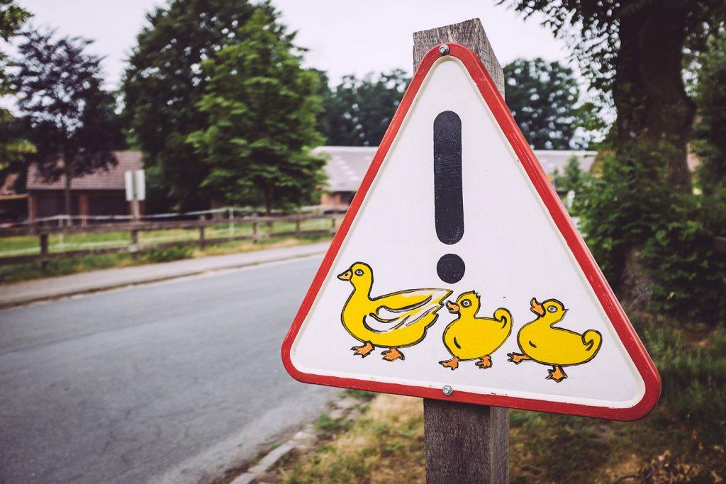 """Achtung Entenfamilie""-Hinweis in Stapel (Horstedt, Niedersachsen)"
