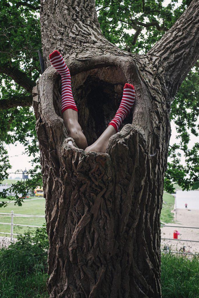 Puppenbeine in Baumstamm in Dangast