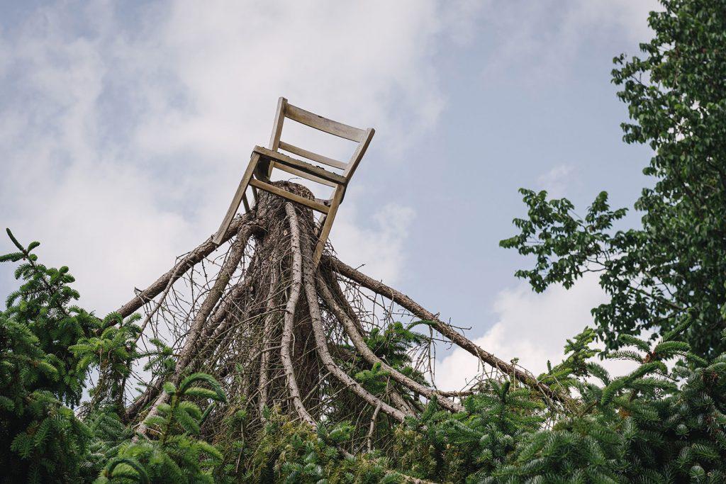 Baum mit Stuhl in Langwarden