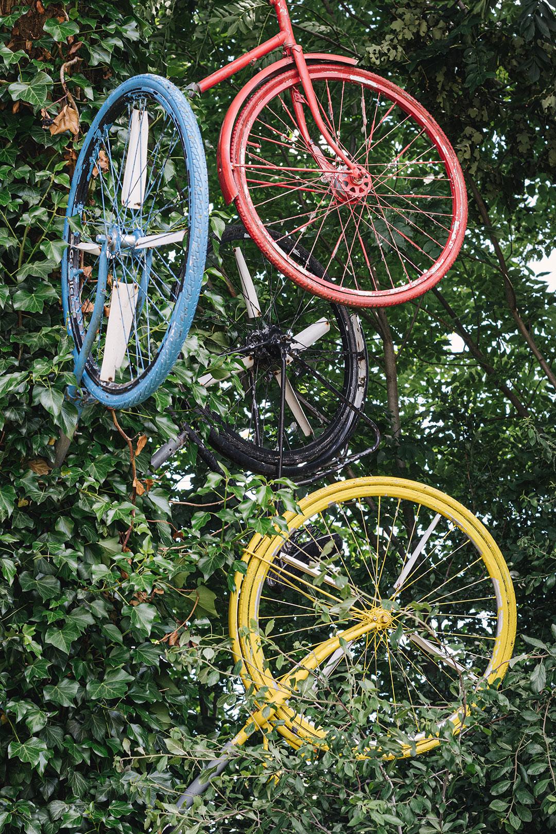 Fahrräder in einem Baum in Netterden