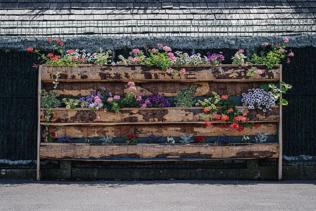 Vertikale Blumenbepflanzung in Gambsheim