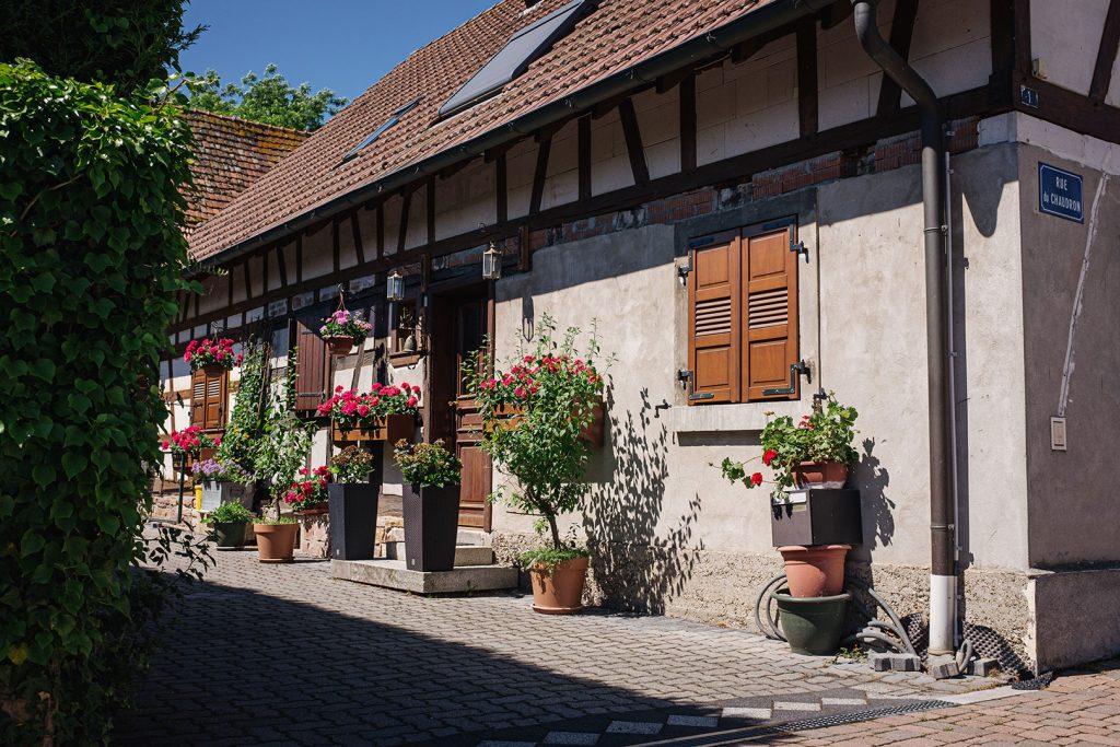 Blumen vor einem Haus in Munchhausen