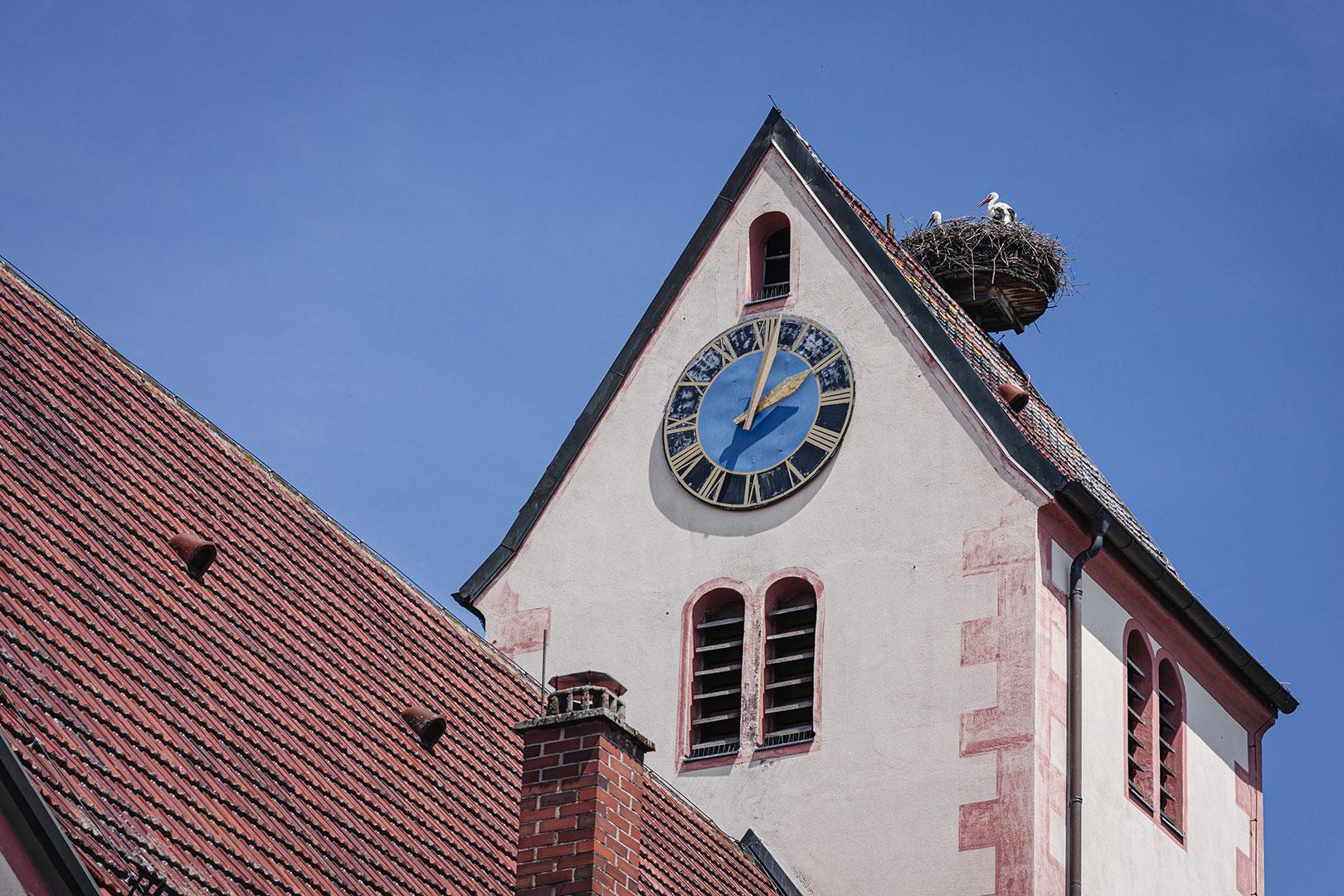 Störche auf dem Kirchturm