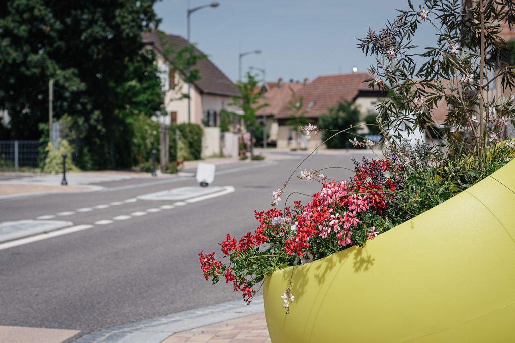 Straßenverlauf mit Blumen am Rand in Hombourg