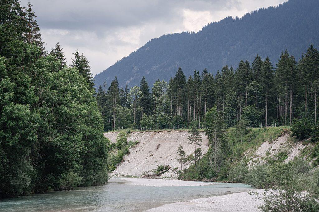 Isar mit Wald an der Mautstraße Wallgau-Vorderriß