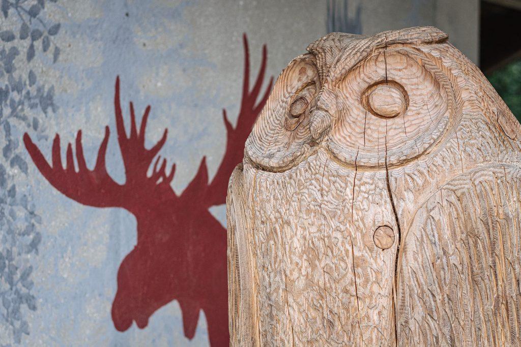 Eule aus Holz am Baumwipfelpfad Bayerischer Wald