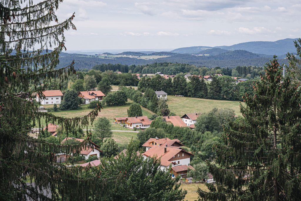 Blick vom Baumwipfelpfad Bayerischer Wald