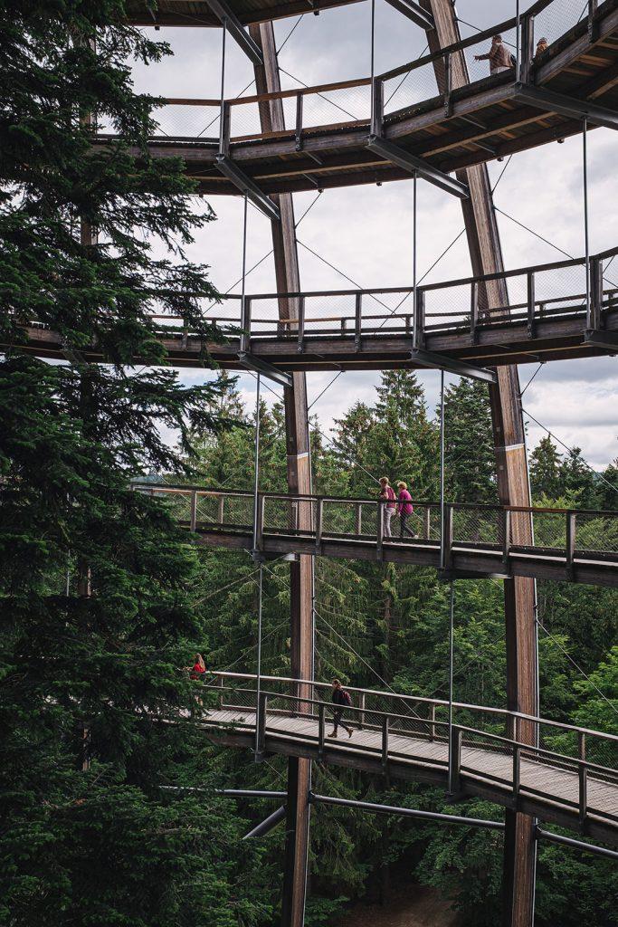 Teil des Baumwipfelpfad Bayerischer Wald