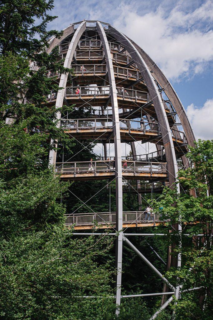 Kompletter Baumwipfelpfad Bayerischer Wald
