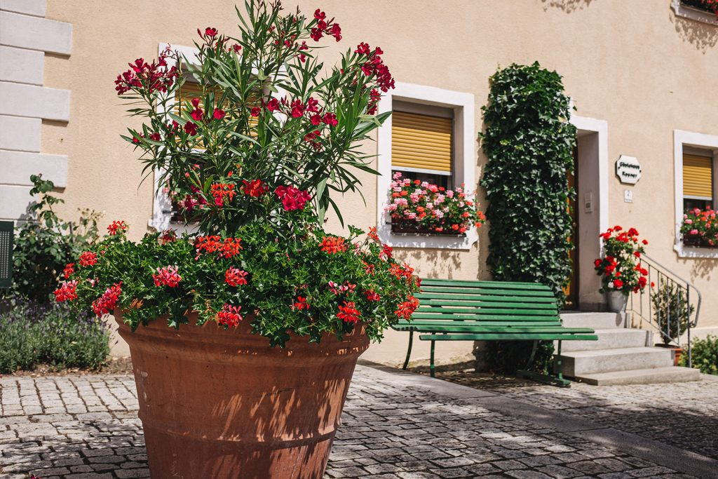 Blumenkübel in Neualbenreuth