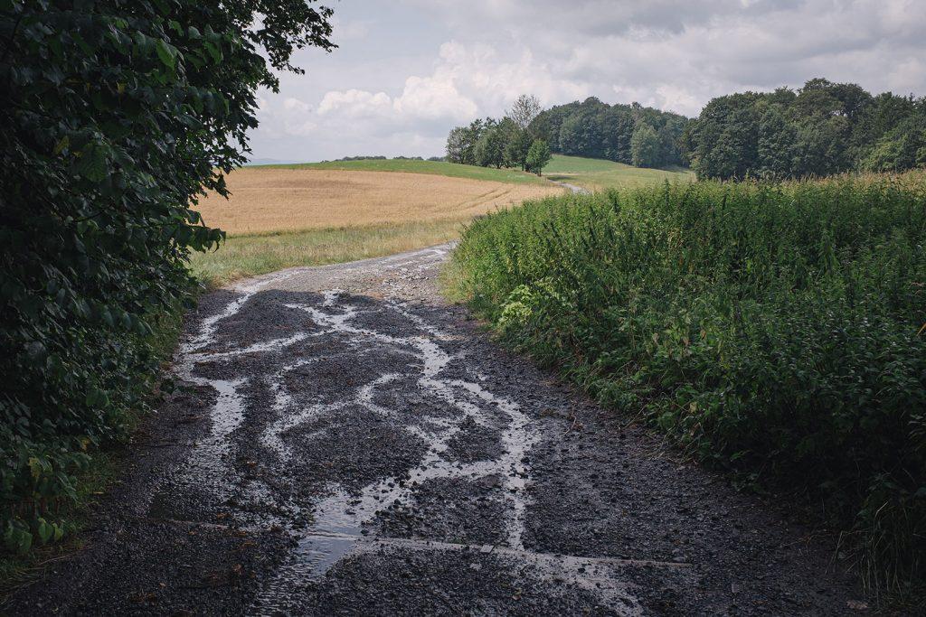 Feldweg in Hertigswalde (Drehort Inglourious Basterds)