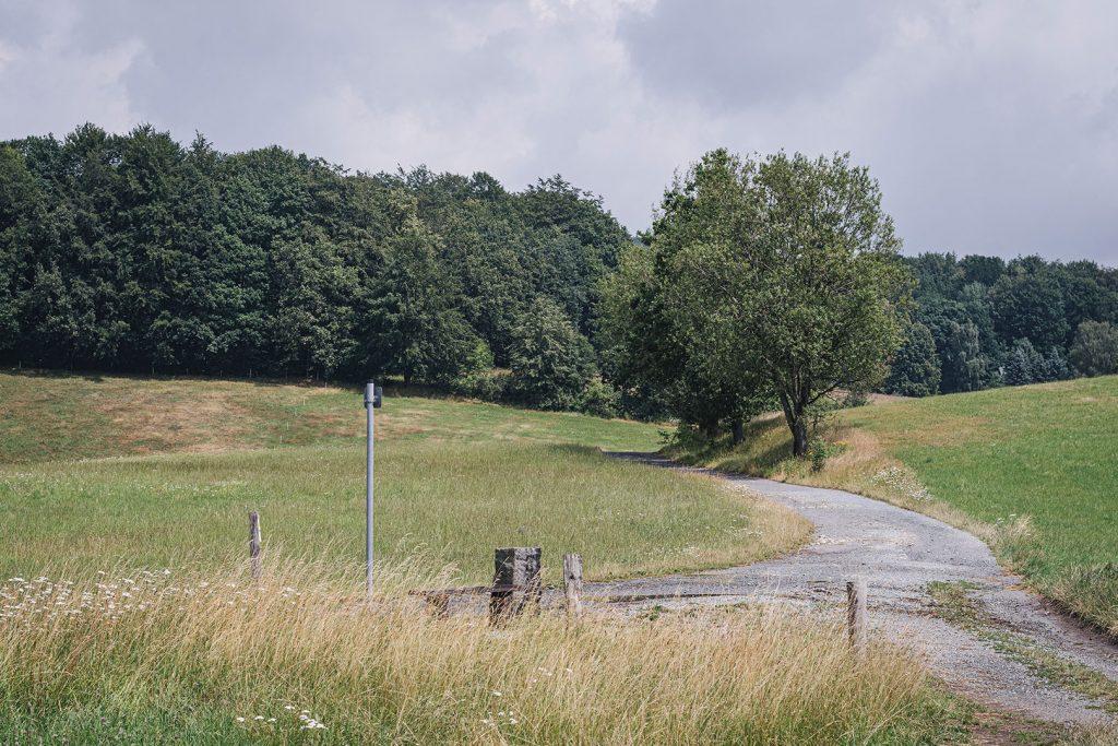 Natur in Hertigswalde (Drehort Inglourious Basterds)