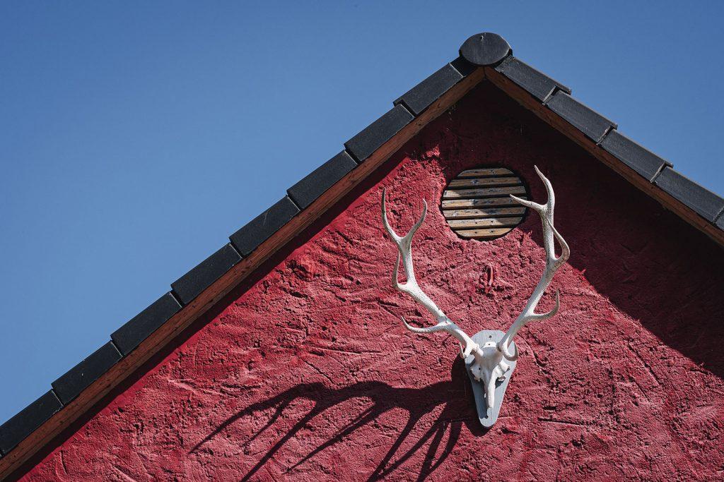 Geweih an Hauswand in Reinberg