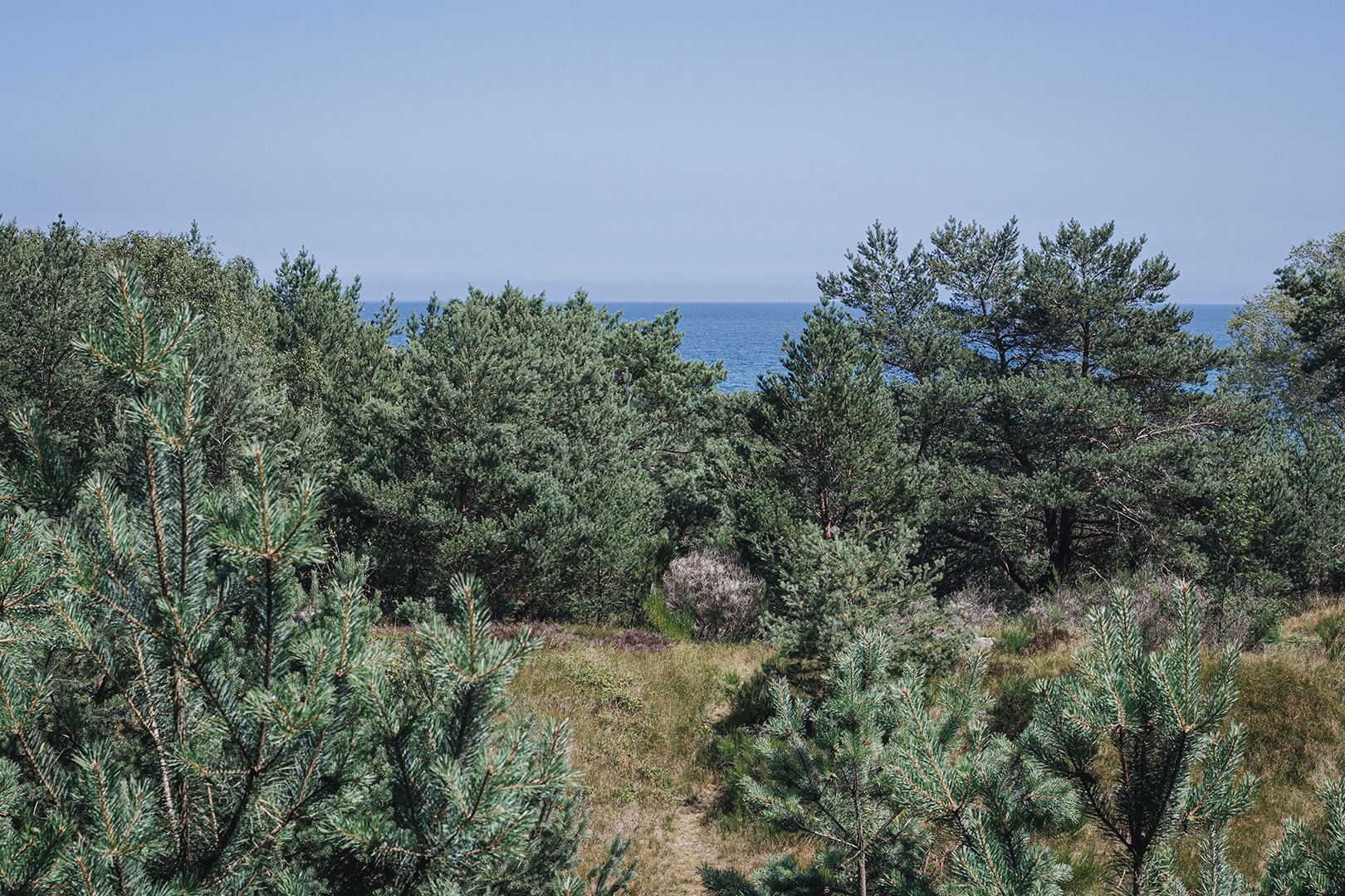 Ausblick aufs Meer aus der Ruine Prora