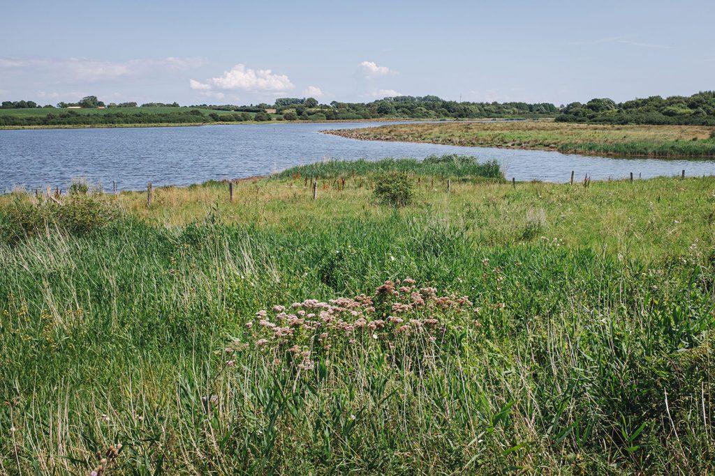 """Naturschutzgebiet """"Geltinger Birk"""""""