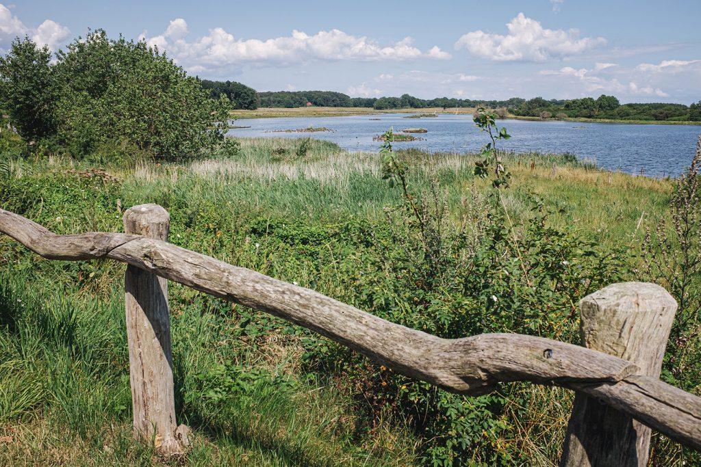 """Teil des Naturschutzgebiet """"Geltinger Birk"""""""