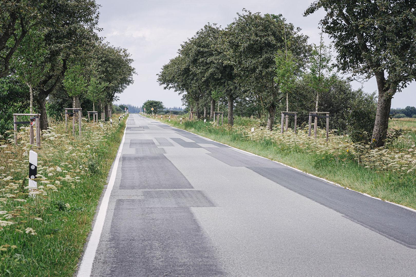 Grenzstraße Deutschland-Dänemark