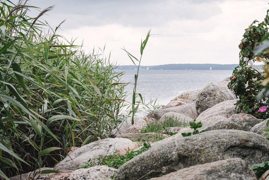 Steine am Ufer in Wassersleben