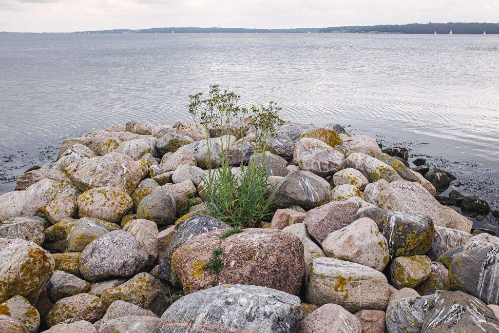 Steinufer in Wassersleben