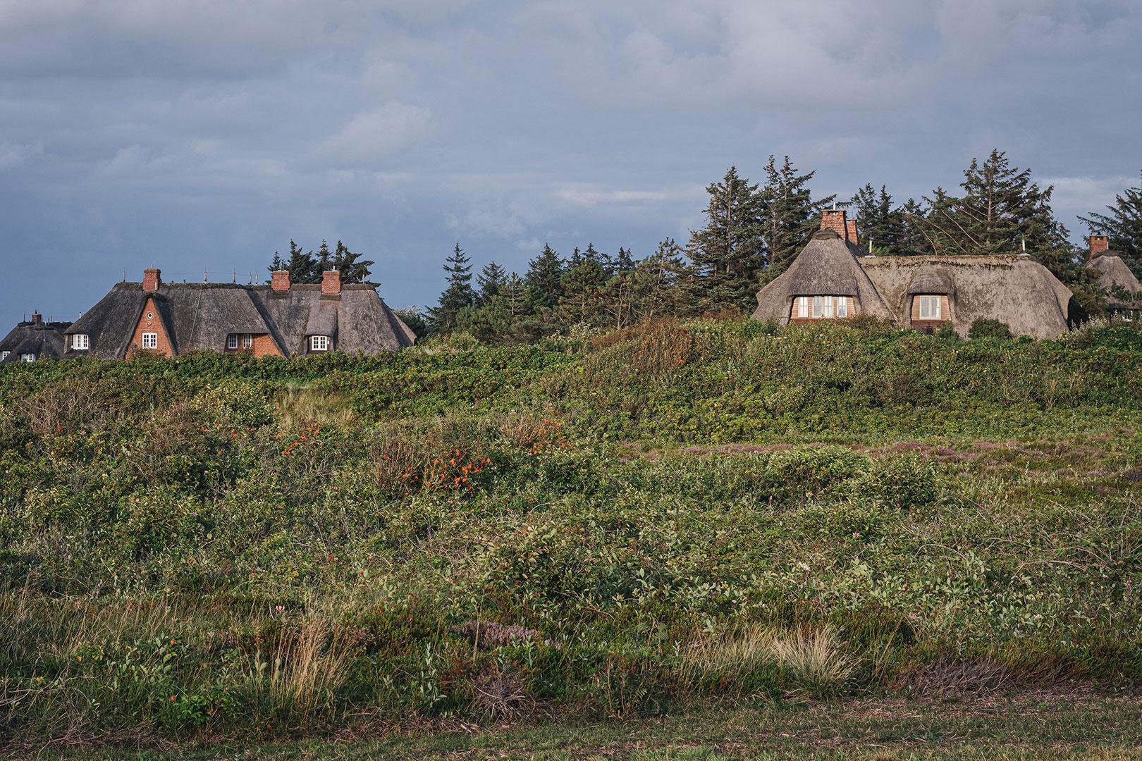 Reetdachhäuser auf Sylt