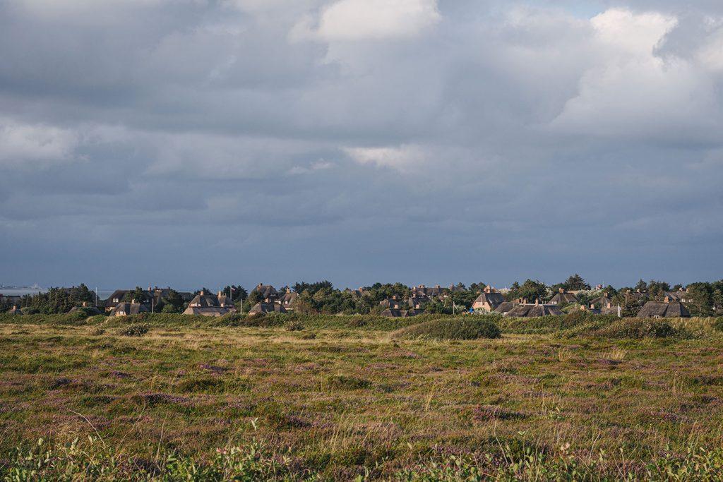 Landschaft mit Häusern auf Sylt