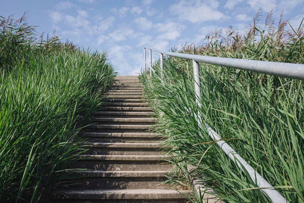 Treppe zum Deich in Südwesthörn