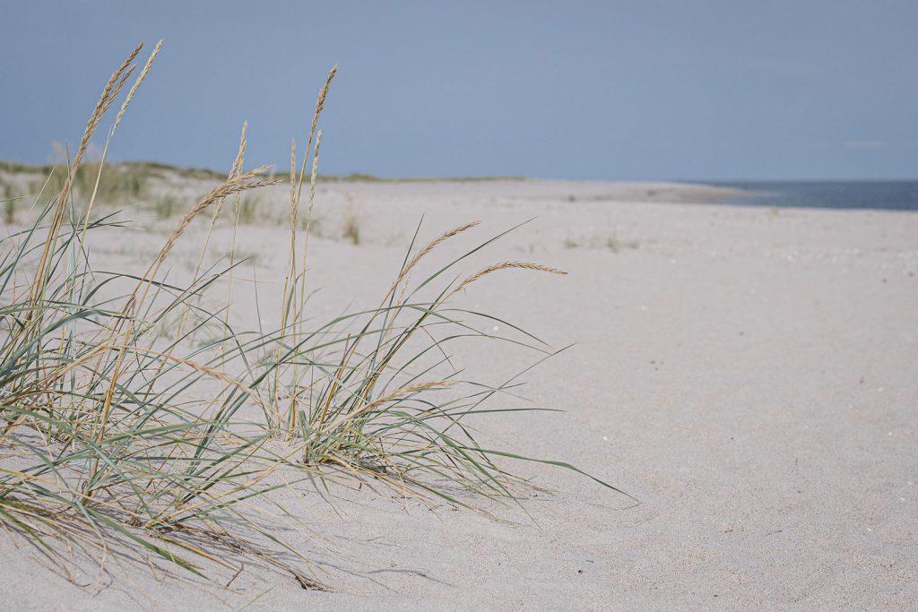 Strand am nördlichsten Punkt Deutschlands in List auf Sylt