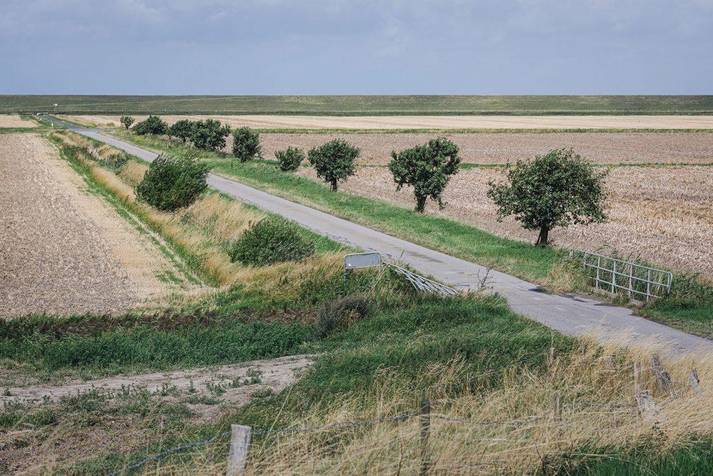 Felder in Hellschen-Heringsand-Unterschaar